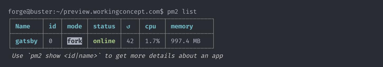 Screenshot of `pm2 list` command, displaying status of gatsby process.