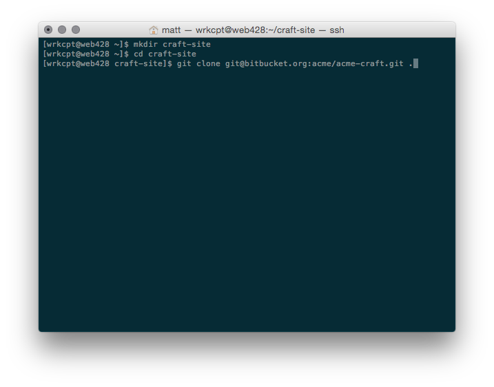 Screenshot of cloning project repository from the command line
